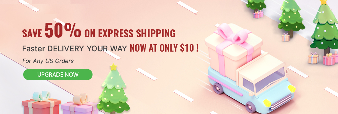 Express shipping available for $10 ONLY. This discount applies to the US region ONLY and does not apply to shipments to remote areas.