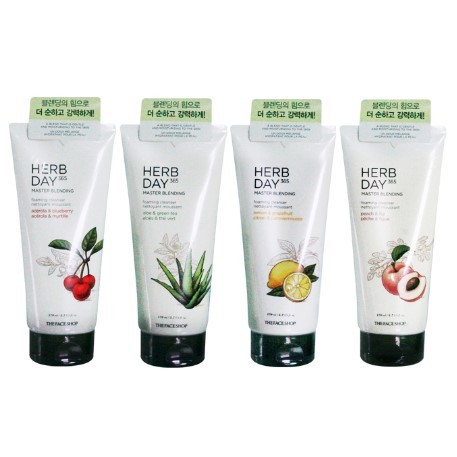 The Face Shop - Herb Day 365 Master Blending Foaming Cleanser